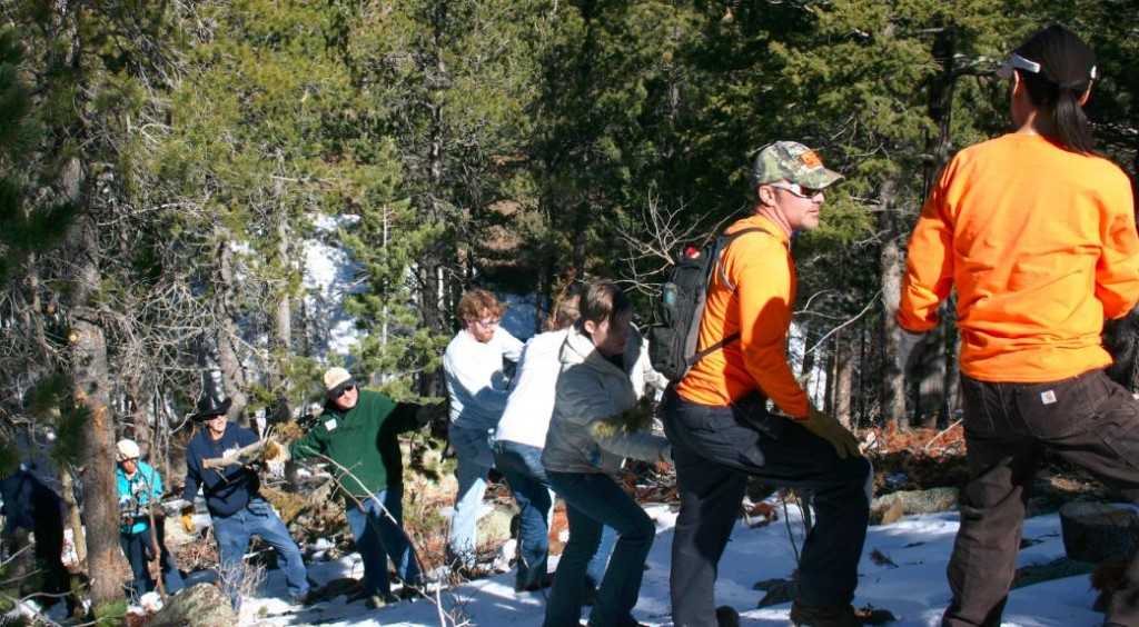 Chain of volunteers passing slash up the hill, Saws Mini-Event March 2015