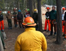 CCC Chainsaw Skills & Safety Class